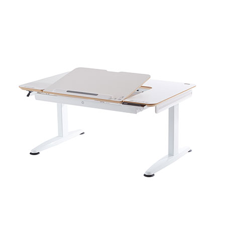 Most Ergonomic Desk - G2C+-XS Gas Lift Workstation
