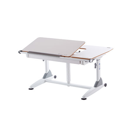 Ergonomic Adjustable Desk - G6+-S Gas Lift Workstation
