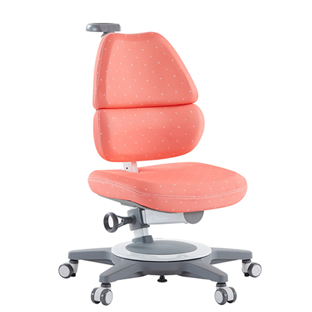 Ergonomic Sitting Chair - EGO Ergo Chair